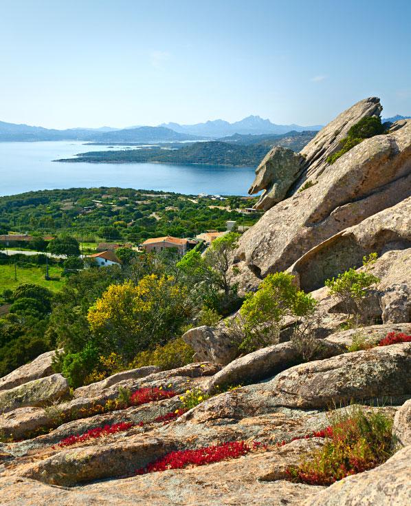 Sardinia-spring1