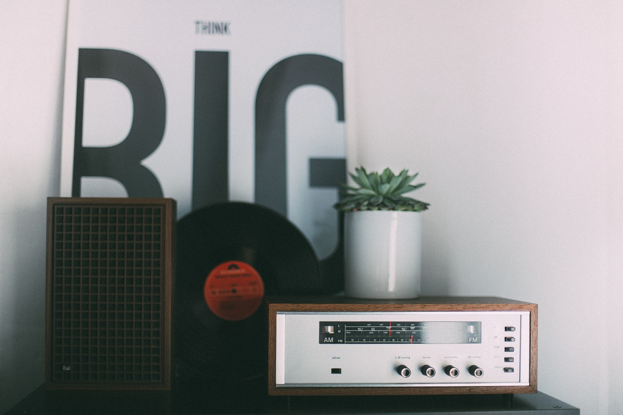 A radio with a plant and record