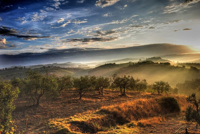 Hills and vineyard countryside scene in Tuscany – another reason to visit with Essential Italy