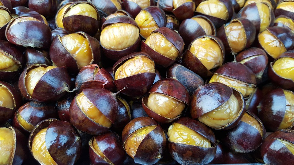 Roasted chestnuts found in Puglia in autumn