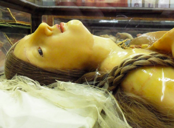 Waxwork model in La Specola in Florence to visit on Tuscany holidays.