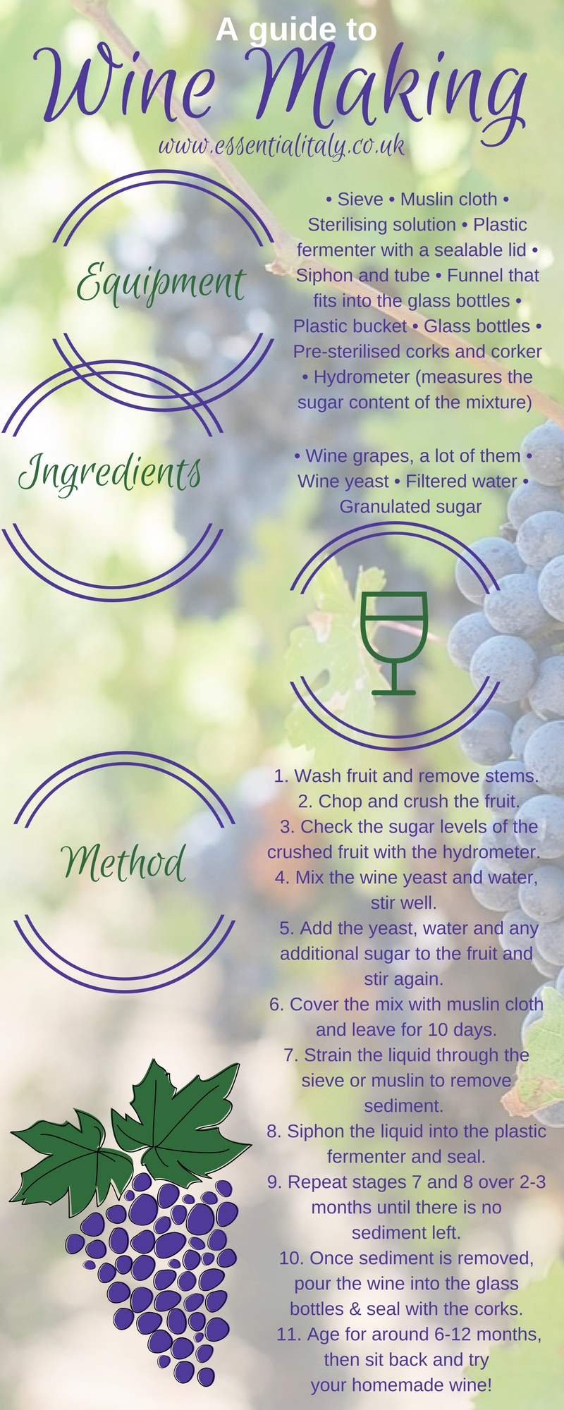 wine brewing guide