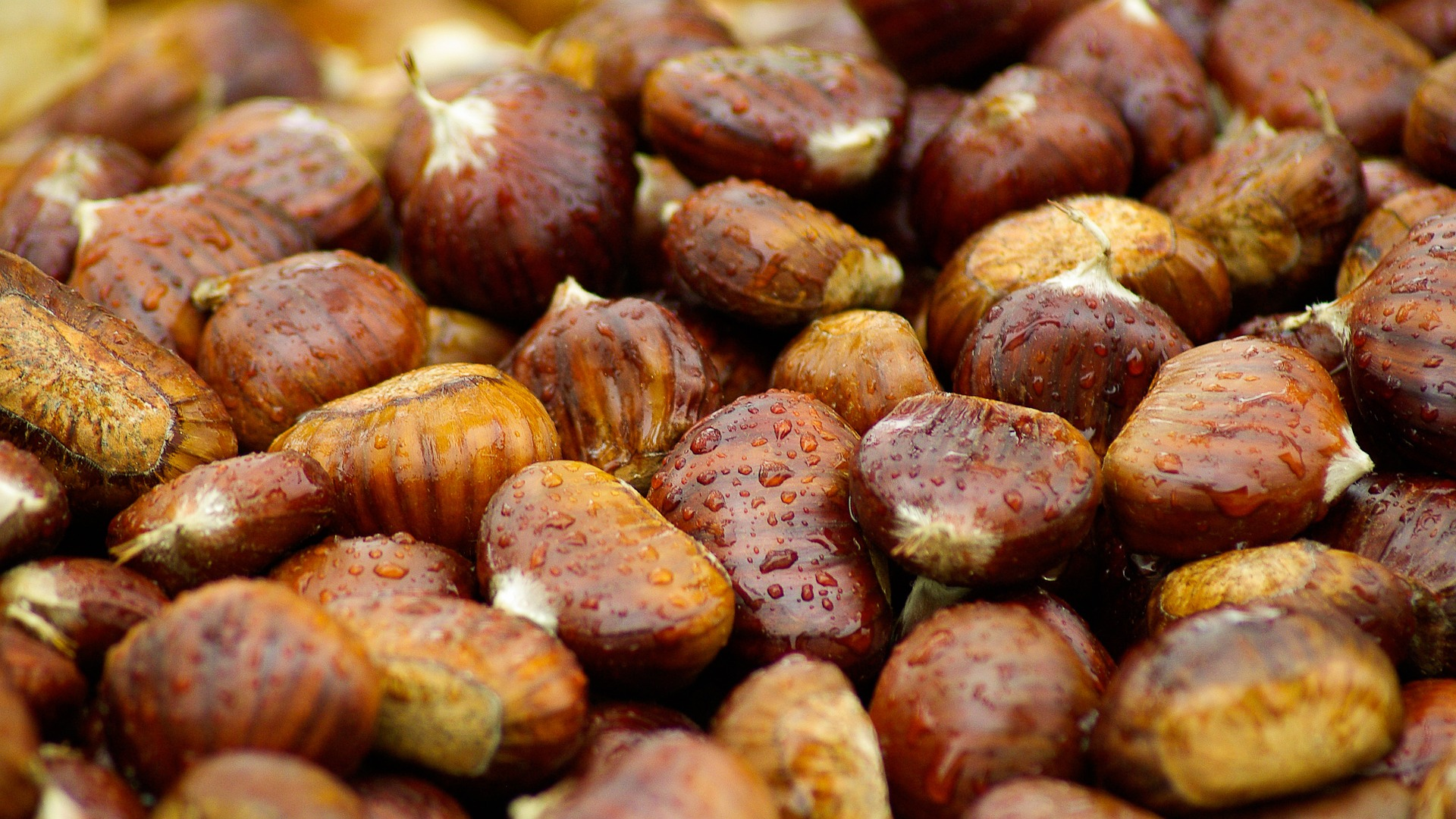 chestnuts with water droplets