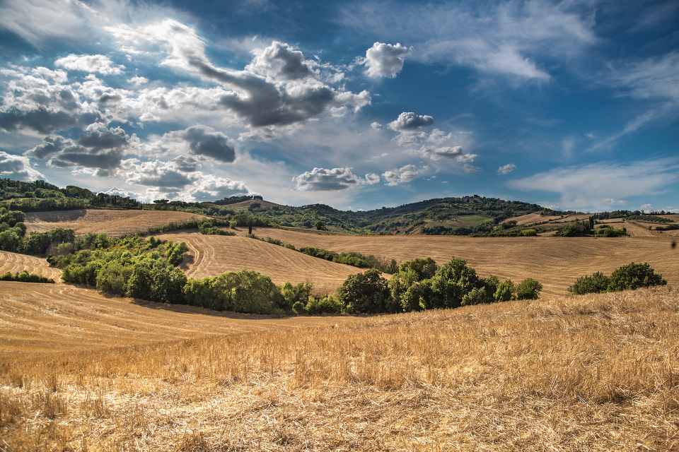 rolling hills in Tuscany near our Italian villas.