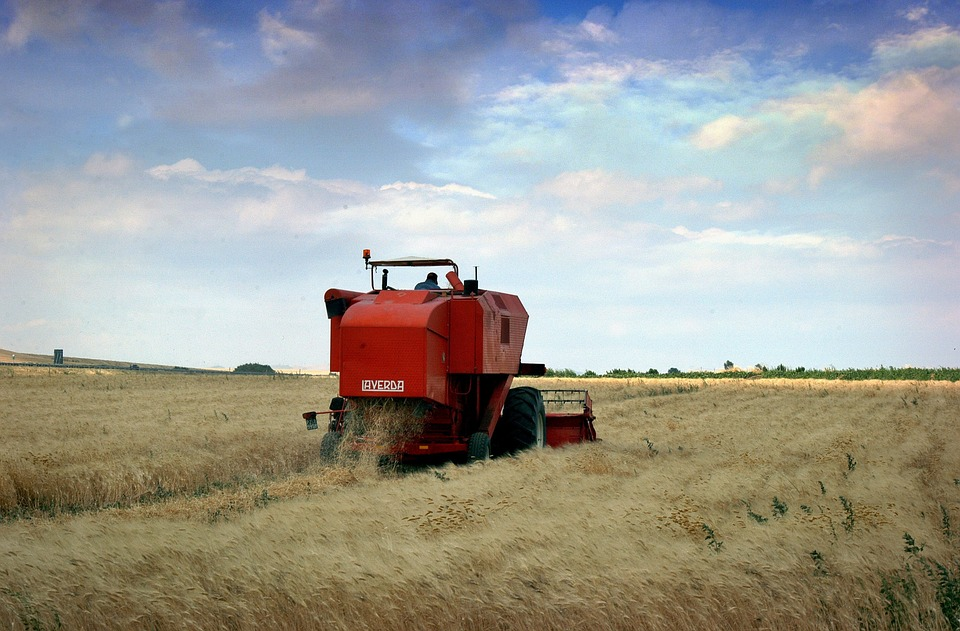 A tractor working on a wheat farm in Puglia, Italy
