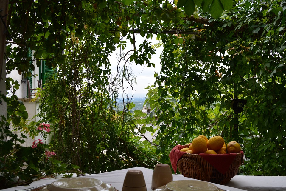 A restaurant table with citrus fruits in a garden in Ostuni, Puglia