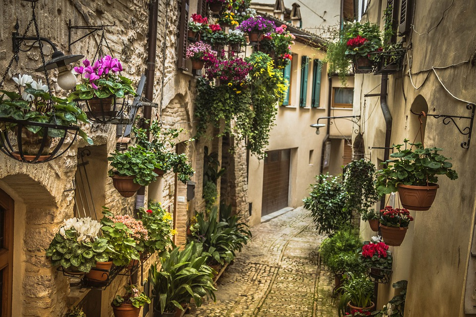 An old cobbled alley with house doors and hanging plants in Umbria, Italy